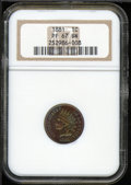 Proof Indian Cents: , 1881 1C, BN