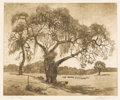 Texas:Early Texas Art - Drawings & Prints, L.O. GRIFFITH (1875-1950). Live Oak - Texas. Etching andaquatint. 7 3/4in. x 9 1/2in.. Signed lower right. Titled lower...