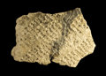 Antiques:Antiquities, Cuneiform Tablet Fragment...