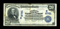 National Bank Notes:Maryland, Salisbury, MD - $20 1902 Date Back Fr. 642 The Peoples NB Ch. #(E)6761. ...