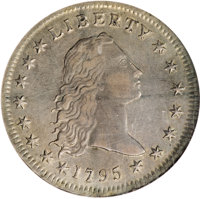 1795 $1 Flowing Hair, Two Leaves AU50 NGC....(PCGS# 39981)