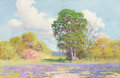 Fine Art - Painting, American:Modern  (1900 1949)  , Attributed to PETER LANZ HOHNSTEDT (American, 1872-1957). Field of Bluebonnets. Oil on board. 20 x 29-3/4 inches (50.8 x...