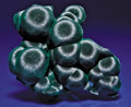 """Minerals:Cabinet Specimens, LITTLE """"JEWEL"""": OUTSTANDING CHINESE MALACHITE. ..."""