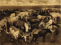Western Expansion:Cowboy, Four George Cornish Wild West Photogravures ca 1909. ... (Total: 4Items)
