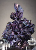 "Minerals:Cabinet Specimens, LITTLE ""JEWEL"": CHALCOCITE. ..."