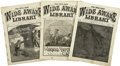 "Books:Periodicals, The Five-Cent Wide Awake Library, ""James Boys"" Stories,Three 1882 Issues,... (Total: 3 Items)"