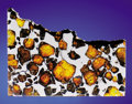 Meteorites:Palasites, IMILAC - PARTIAL SLICE OFA METEORITE WITH SPACE GEMS. ...