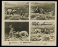 """Movie Posters:Documentary, The Animal World (Warner Brothers, 1956). Still (8"""" X 10"""") Autographed. Documentary...."""