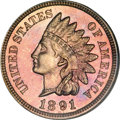 Proof Indian Cents, 1891 1C PR66 Red and Brown NGC....