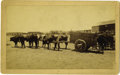 """Photography:Cabinet Photos, Large Cabinet Card Photograph of El Paso, Texas """"Ox Team"""" PullingCart ca 1880s - ..."""