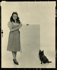 "Judy Garland and Toto in ""The Wizard of Oz"" Contact Proof by Clarence Sinclair Bull (MGM, 1939). Still (8""..."