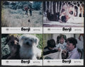 "Movie Posters:Adventure, Benji (Mulberry Square Releasing, 1974). Lobby Cards (4) (11"" X14""). Adventure.... (Total: 4 Items)"
