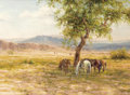 Paintings, BARBARA R. GARVIN (American, b. 1936). The Siesta Tree, 1970. Oil on canvas. 18 x 24 inches (45.7 x 61.0 cm). Signed low...