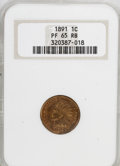 Proof Indian Cents: , 1891 1C PR65 Red and Brown NGC. NGC Census: (44/5). PCGS Population (29/1). Mintage: 2,350. Numismedia Wsl. Price for NGC/P...