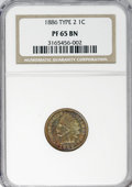 Proof Indian Cents: , 1886 1C Type Two PR65 Brown NGC. PCGS Population (11/2). NumismediaWsl. Price for NGC/PCGS coin in PR6...
