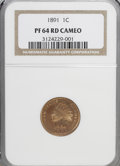 Proof Indian Cents, 1891 1C PR64 Cameo NGC....