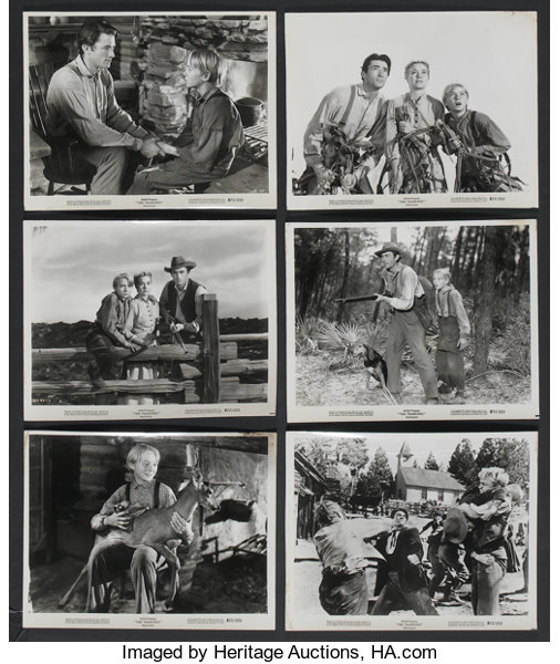 The Yearling (MGM, R-1971)  Publicity Stills (6) (8