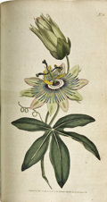 Books:Non-fiction, William Curtis. The Botanical Magazine;... (Total: 19 Items)