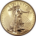 2006-W $50 One-Ounce Gold Eagle Reverse Proof PR70 ICG....(PCGS# 89994)