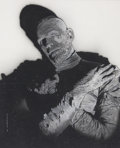Original Comic Art:Paintings, Jeff Pittarelli Boris Karloff as the Mummy Painting OriginalArt (2003)....
