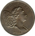 Half Cents, 1794 1/2 C MS63 Brown PCGS. CAC....