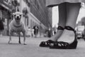 Photographs, ELLIOTT ERWITT (American, b. 1928). New York, 1946. Silver gelatin, 1974. 9 x 13-1/2 inches (22.9 x 34.3 cm). Recto: sig...