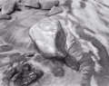 Photography :20th Century , CHIP HOOPER (American, b. 1962). Radiating Rock, 1997. Silver gelatin, 1997. 15-1/2 x 19-1/2 inches (39.4 x 49.5 cm). Re...