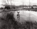 Photographs, JOCK STURGES (American, b. 1947). Mike with Chicken on His Head, 1993. Silver gelatin, 1993. 16 x 20 inches (40.6 x 50.8...