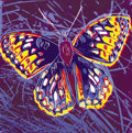 Fine Art - Work on Paper:Print, ANDY WARHOL (American, 1928-1987). San Francisco Silverspot,1983. Published in the portfolio Endangered Species. Sc...