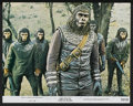 """Movie Posters:Science Fiction, Battle for the Planet of the Apes (20th Century Fox, 1973). LobbyCard Set of 8 (11"""" X 14""""). Science Fiction.... (Total: 8 Items)"""