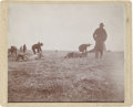 Photography:Cabinet Photos, Image of Cattle Slaughter, circa 1880s....