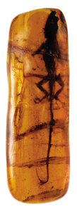 Amber, SPECTACULARLY RARE - A LARGE LIZARD PERFECTLY PRESERVED INPREHISTORIC AMBER. ...