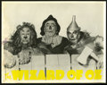 """Movie Posters:Fantasy, The Wizard of Oz (MGM, R-1950s). Stills (6) (11"""" X 14"""").Fantasy.... (Total: 6 Items)"""