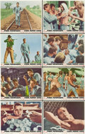 """Movie Posters:Drama, Cool Hand Luke (Warner Brothers, 1967). Lobby Card Set of 8 (11"""" X14"""").. ... (Total: 8 Items)"""