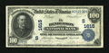 National Bank Notes:Kentucky, Henderson, KY - $100 1902 Date Back Fr. 690 The Henderson NB Ch. #(S)1615. ...