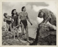 "Movie Posters:Adventure, Tarzan's Secret Treasure Publicity Still by Clarence Sinclair Bull(MGM, 1941). Still (8"" X 10"").. ..."