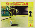 """Movie Posters:Horror, The Incredible Shrinking Man (Universal International, 1957). Lobby Cards (2) (11"""" X 14""""). ... (Total: 2 Items)"""