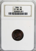 Proof Indian Cents, 1886 1C Type One PR66 Brown NGC....