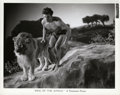 "Movie Posters:Adventure, Buster Crabbe in ""King of the Jungle"" Stills (Rayart Pictures, 1927). Stills (50) (8"" X 10"").. ... (Total: 50 Items)"