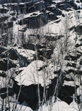 Photography :20th Century , ELIOT FURNESS PORTER (American, 1901-1990). Rocks, Snow, and Trees, 1960s. Vintage dye transfer printed by Eliot Porter,...