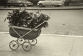 Photography :20th Century , ROBERT FRANK (American, b. 1924). Baby Carriage with Plants, circa 1951. Vintage gelatin silver, 1950s. Paper: 11 x 14 i...