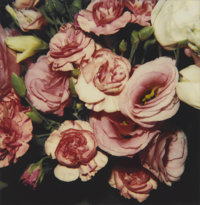 NOBUYOSHI ARAKI (Japanese, b. 1940) Untitled (Pink Bouquet), circa 2006 Unique Polaroid, circa 2006<