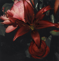 NOBUYOSHI ARAKI (Japanese, b. 1940) Untitled (Red Bouquet), circa 2006 Unique Polaroid, circa 2006