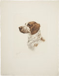 Antiques:Posters & Prints, J. Rivet (?). English Springer Spaniel Head. French print, dated1938. In excellent condition, signed by the artist ...