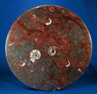 LARGE ROUND AMMONITE TABLE TOP