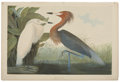 Antiques:Posters & Prints, John James Audubon (1785-1851). Reddish Egret - Plate 371 (BienEdition)....