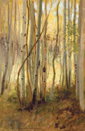 Fine Art - Painting, American:Modern  (1900 1949)  , HAMILTON HAMILTON (American, 1847-1928). Sunlit BirchForest. Oil on canvas. 30-1/4 x 20-1/8 inches (76.8 x 51.1 cm).Si...
