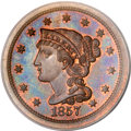 Proof Large Cents, 1857 1C Small Date PR64 Brown PCGS....