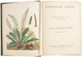 Books:Non-fiction, James Britten. European Ferns. London: Cassell &Company, [n. d.]. Publisher's cloth with 30 colored plates. Clo...