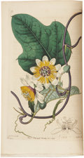 Books:Non-fiction, Sydenham Edwards. The Botanical Register: Consisting of ColouredFigures of Exotic Plants, Cultivated in British Gardens... (Total:25 Items)